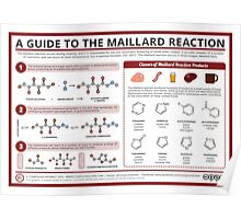 The Maillard Reaction Poster