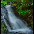Whiskeytown Falls by Rickcalif