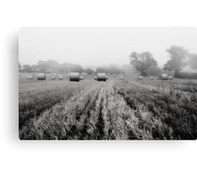 Foggy and Dull Canvas Print