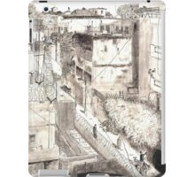 Delhi from a rooftop iPad Case/Skin