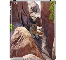 African Lioness iPad Case/Skin