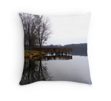 Icy Mirror  Throw Pillow