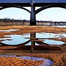 Reflecting Waters by Elizabeth Burton