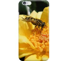 Matching insect iPhone Case/Skin