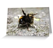 Bumble Bee Yoga Greeting Card