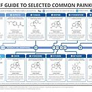 Guide to Common Painkillers by Compound Interest