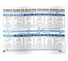 Guide to Common Painkillers Poster