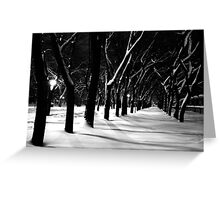 Snow Park Greeting Card