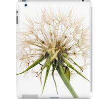 Dandelion Fluff iPad Case/Skin