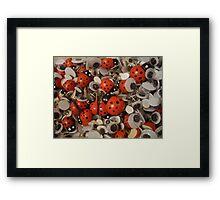 Ladybirds and google eyes Framed Print