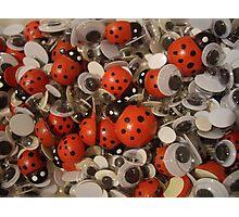 Ladybirds and google eyes Photographic Print