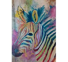 Zebra Splash Photographic Print