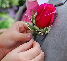 Pinning of the Rose by RBT616