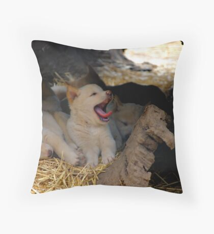 DINGO PUPS Throw Pillow