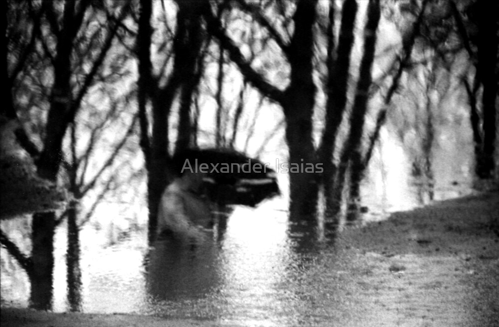 Walking in the Rain by Alexander Isaias