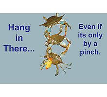 Hang in There... Photographic Print