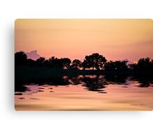 The Calming Force Canvas Print