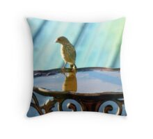 Okay, Who Pooped In The Bathwater?  Throw Pillow