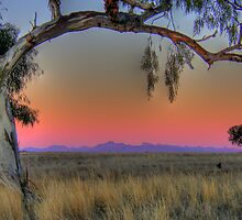 The Warrumbungles at dusk by pedroski