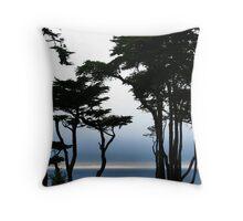 The Pacific Ocean Throw Pillow