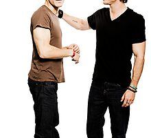 Damon and Stefan Salvatore by mianelmes00