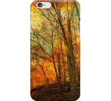 through the wood iPhone Case/Skin