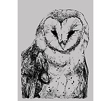 Another Pretty Cool Owl Photographic Print