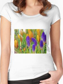 Buds of crocus Women's Fitted Scoop T-Shirt