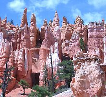The Queen's Garden, Bryce Canyon National Park by Laurie Puglia