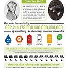 Avogadro & The Mole by Compound Interest
