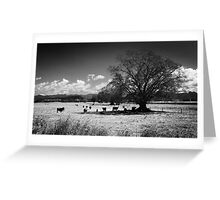 Outback NSW Greeting Card