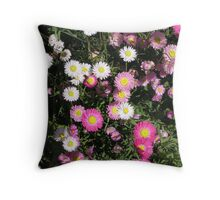 Everlastings in close up Throw Pillow