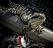 Bad Iguana by Lance Jackson
