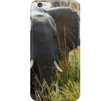Zambian elephant iPhone Case/Skin