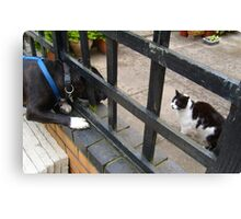 The neighbourhood fence battle continues - Chrissie will win in the end, Dat's Rule and Diesel Drools! Canvas Print