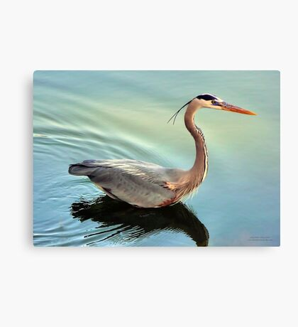 Floating By Canvas Print