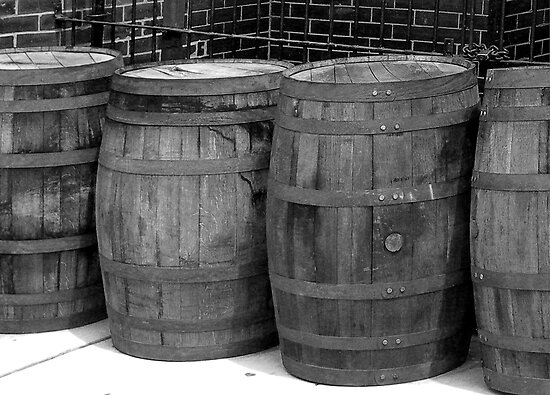 WOODEN BARRELS IN A ROW by Reese Forbes
