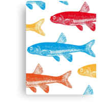 Colourful Fish Canvas Print