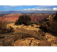Grand Canyon Vista No. 9 Photographic Print