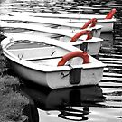 Rowing Boats by Susan E. King