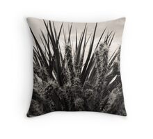 Yucca & Cactus No. 1 Throw Pillow