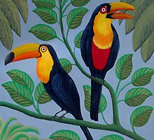 Toucans by fbkohli