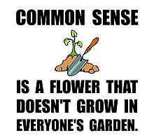 Common Sense Garden by AmazingMart