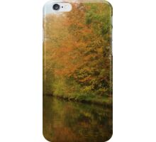 Autumn colours in reflection iPhone Case/Skin