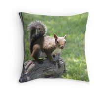 Jekyll #6 Throw Pillow
