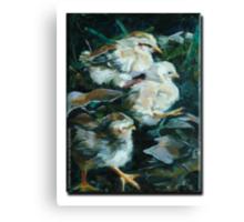 Moa Chicks 1 Canvas Print
