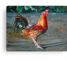 Rusty Pinklegs Canvas Print