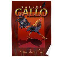Gallo Poster