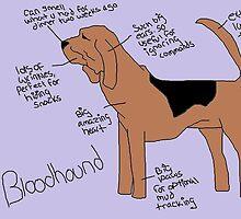 Bloodhound by nottostandard