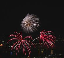 Labor Day Fireworks by noffi